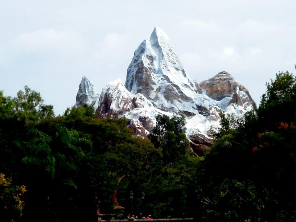 Robert's Top Five: 5. DINOSAUR 4. Pangani Forest Exploration Trail 3. Maharajah Jungle Trek 2. Expedition Everest 1. Kilimanjaro Safaris  What are your favorites?
