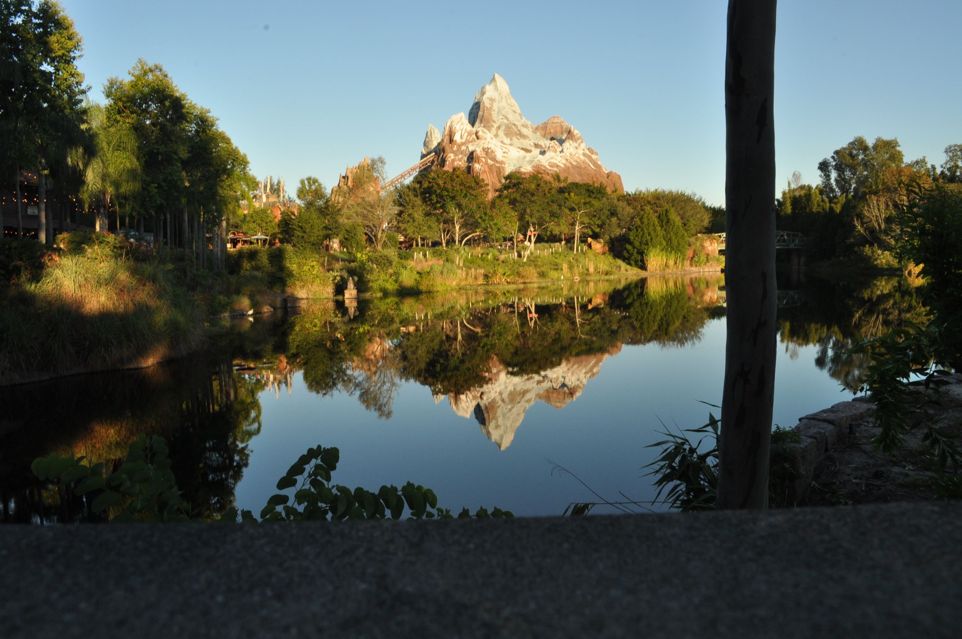 Our fourth day brought us into a whole new world for us with Disney – Walt Disney's Animal Kingdom.  Fun fact:  The island across from the Contemporary Resort to the […]