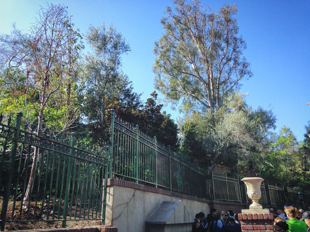 New hauntedmansion fences at Disneyland Thoughts? neworleanssquare